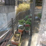 庭の片付け